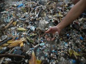 Kamilo Beach plastic