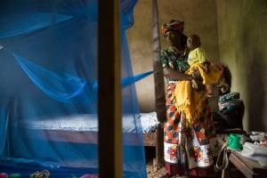 Malaria family