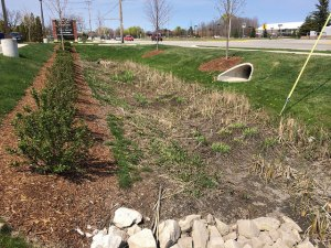 Stormwater capture, WI